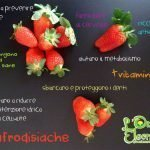 FraGolose Love Story – Storia d'Amore e Fragole